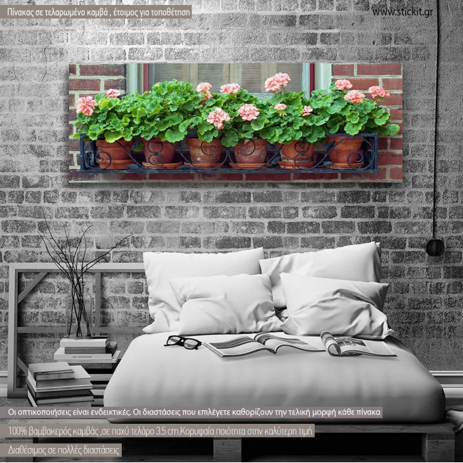 Canvas print Geraniums, panoramic