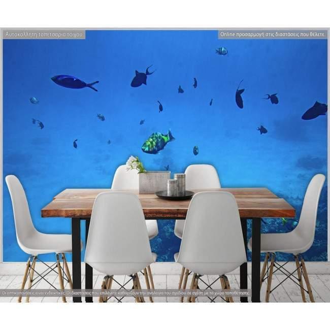 Wallpaper Underwater world