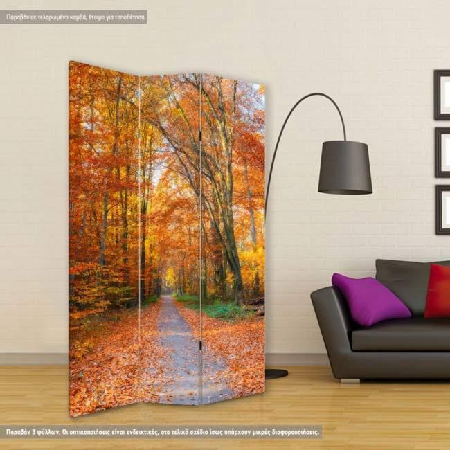 Room divider Autumn path