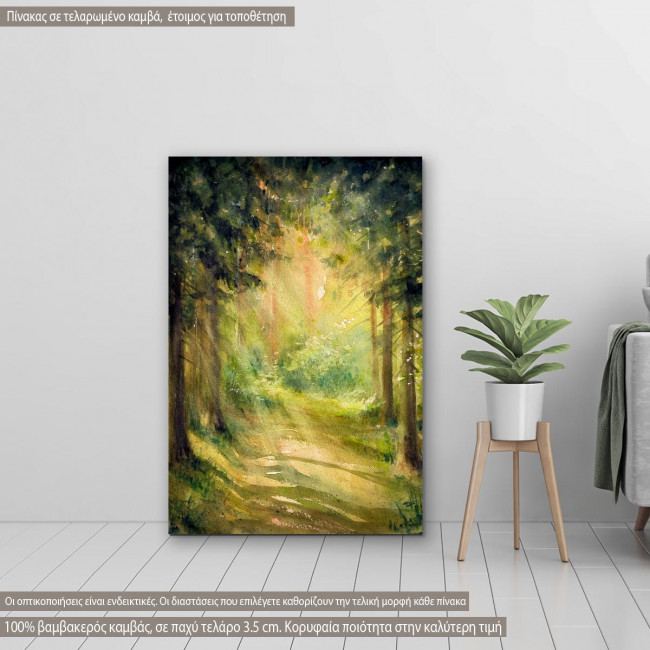 Canvas print  Sunny summer forest