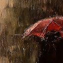 Παραβάν, Under the umbrella