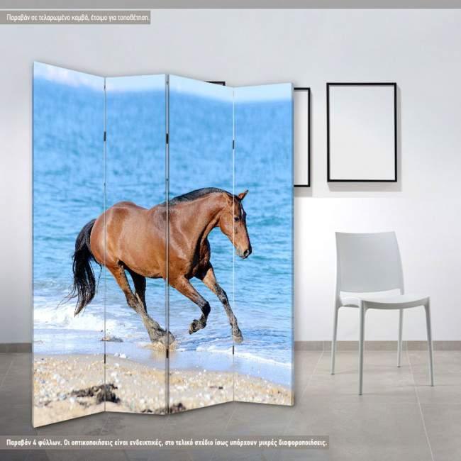 Παραβάν Horse in the water