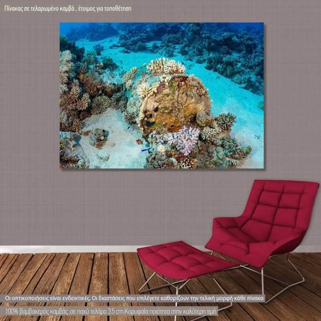 Πίνακας σε καμβά Man made coral reef