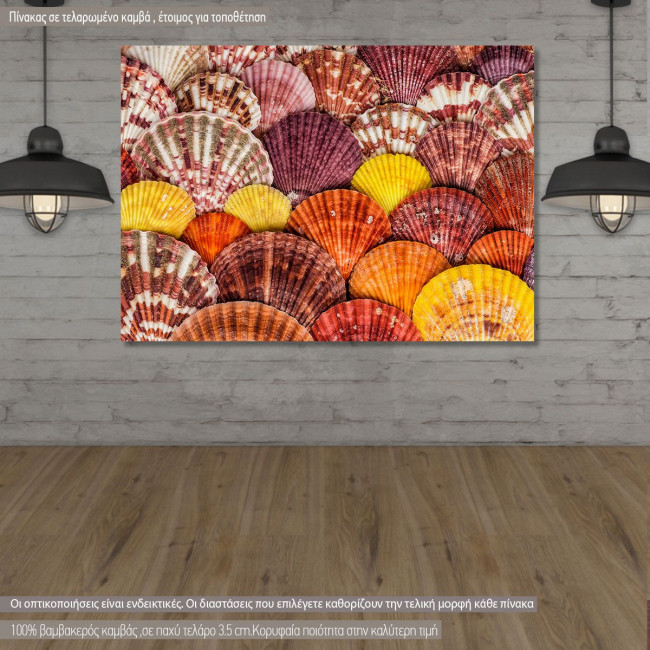 Πίνακας σε καμβά Seashells and stones