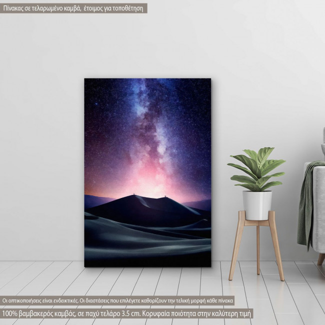Canvas print  Desert milky way