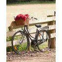 Ποδήλατο στο Φράχτη ,Φωτογραφική ταπετσαρία