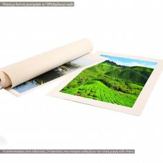 Canvas print with your photo vertical without frame