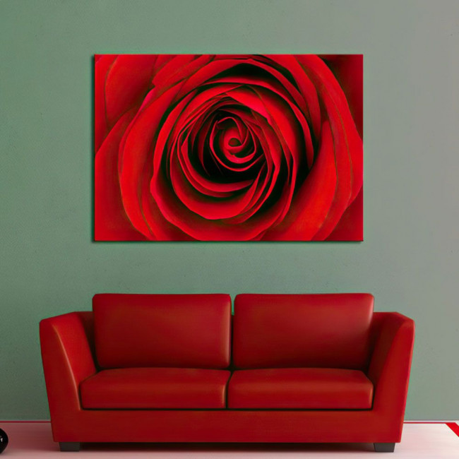 Canvas print Rose, Heart of red rose