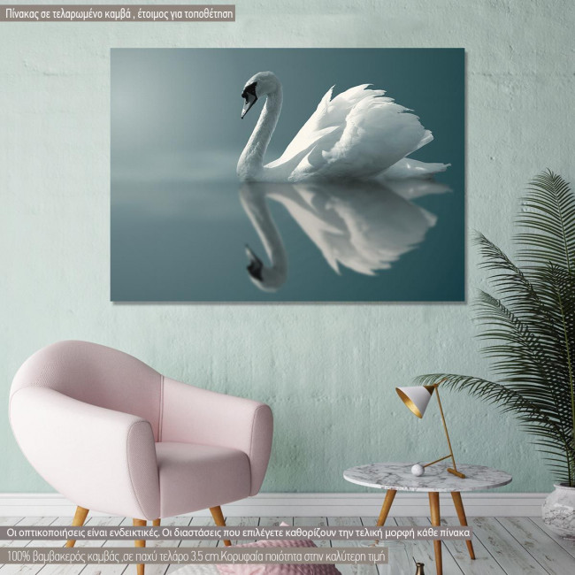 Canvas print Swan, Swan reflections