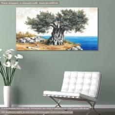 Πίνακας σε καμβά Ελιά στη θάλασσα, πανοραμικός