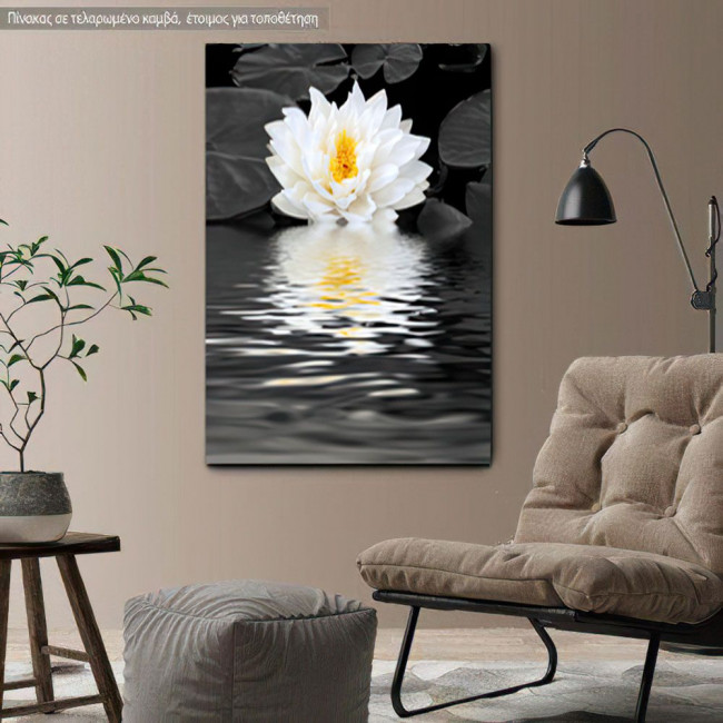 Canvas print White lily beauty