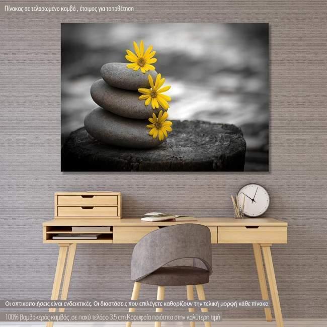 Πίνακας σε καμβά Yellow flowers balance