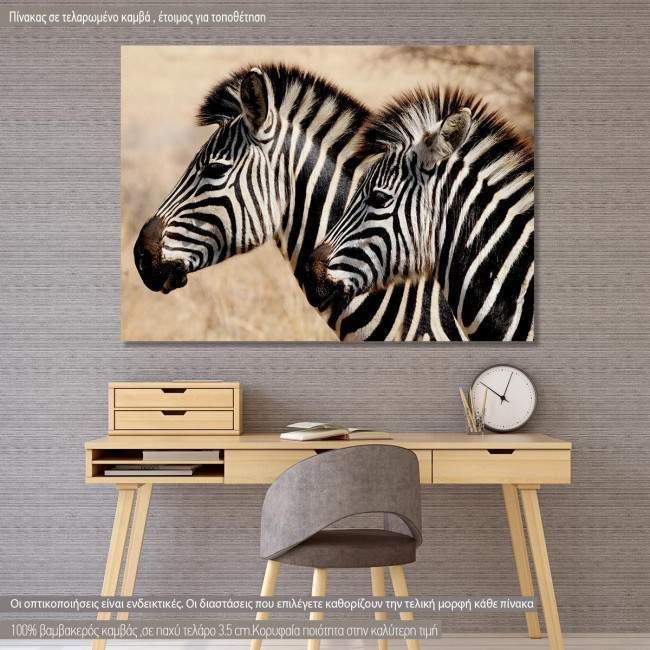 Πίνακας σε καμβά Zebras