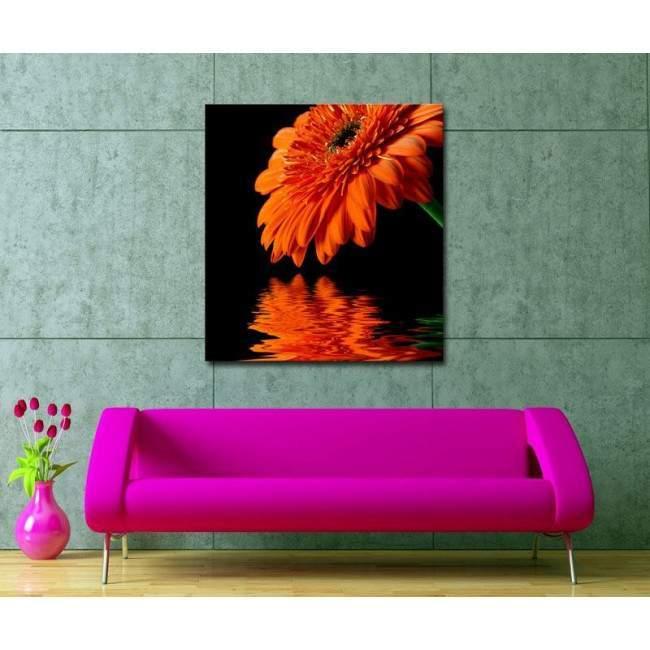 Πίνακας σε καμβά Μαργαρίτα, Orange daisy reflections