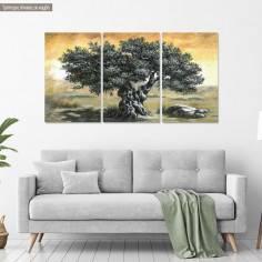 Canvas print Olive tree, 3 panels panoramic