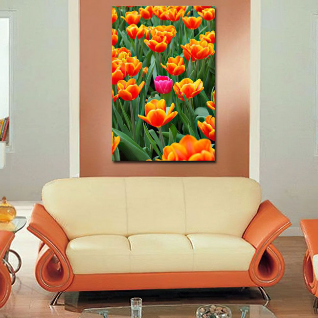 Πίνακας σε καμβά Ροζ τουλίπα ανάμεσα σε πορτοκαλί