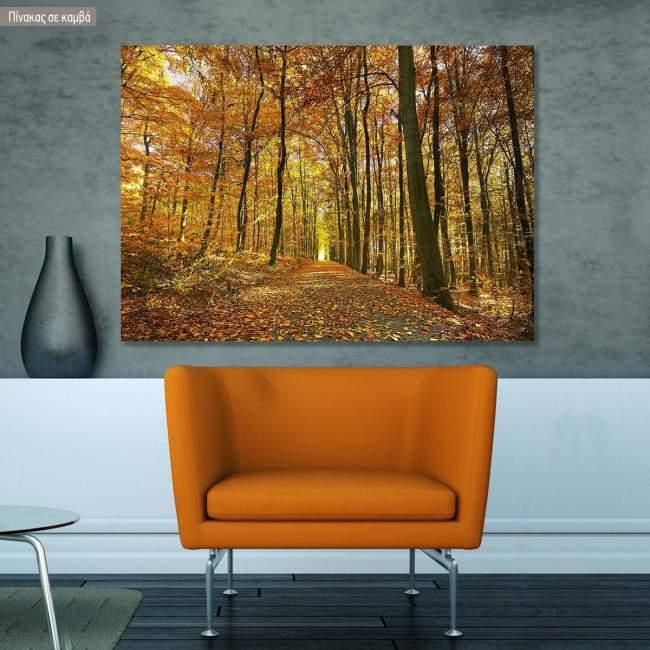 Canvas print Autumn colors