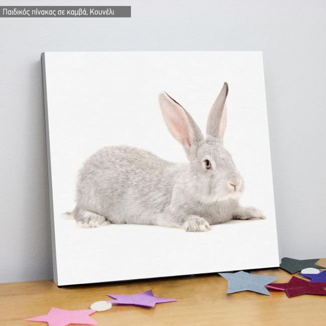 Kids canvas print Gray rabbit