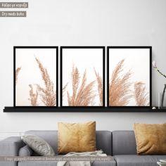 Canvas print Dry reeds boho style  3 panels