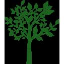 Abstract treeι,  αυτοκόλλητο τοίχου, κοντινό
