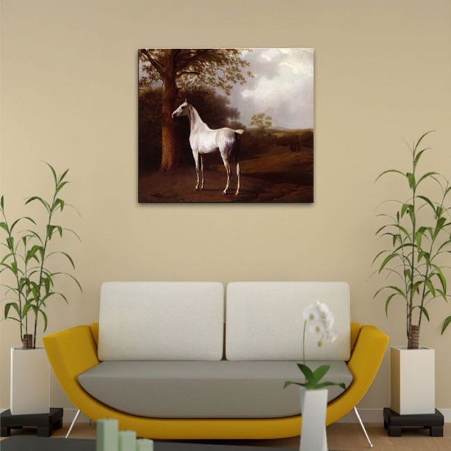 Canvas print Grey horse on the grassland, Agasse