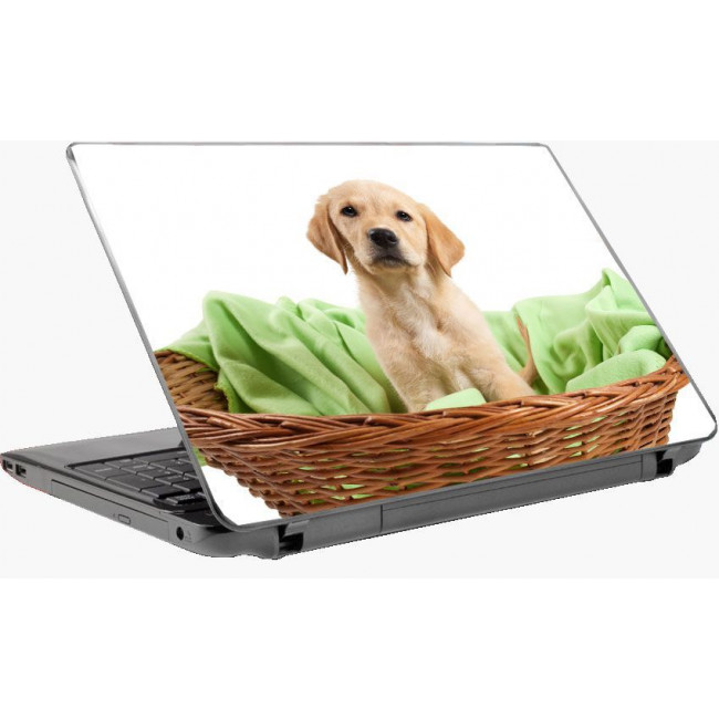 Puppie αυτοκόλλητο laptop