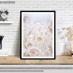 Reeds I, poster