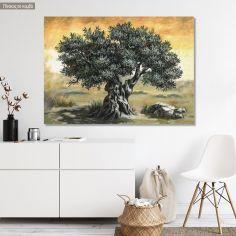Canvas print Olive tree