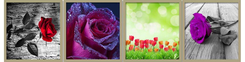 Λουλούδια σε ταπετσαρίες τοίχου, πόστερ - αφίσες