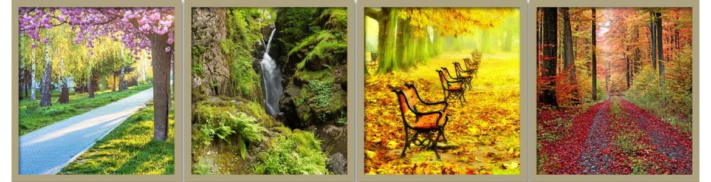 Φύση - τοπία