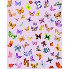 Αυτοκόλλητα τοίχου παιδικά, Πεταλούδες Συλλογή