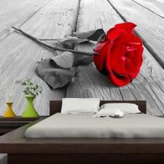 Κόκκινο τριαντάφυλλο, ταπετσαρία τοίχου φωτογραφική
