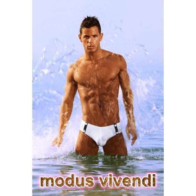 Modus Vivedi , Banners