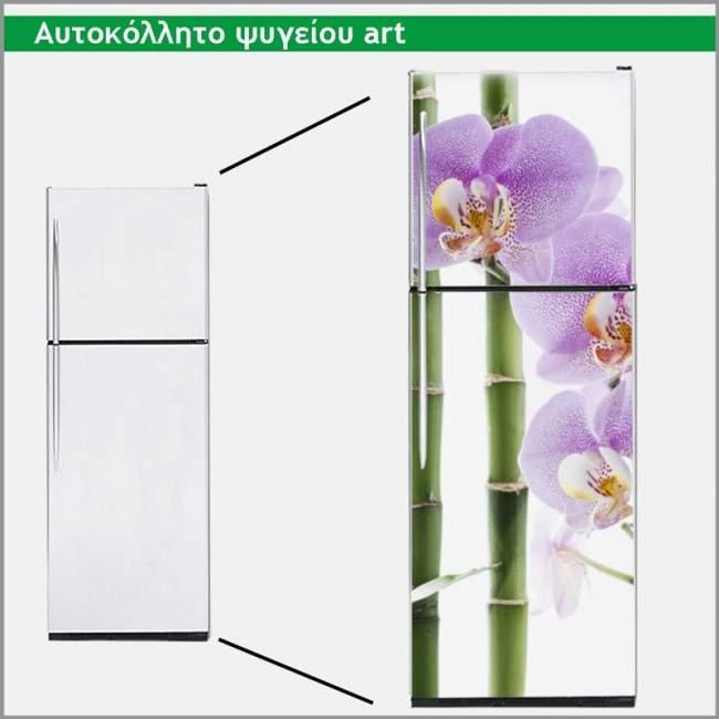 Orchidea, αυτοκόλλητο ψυγείου