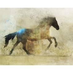 The horse , Πίνακας σε καμβά , 90 X 70