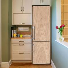 Δρυς , αυτοκόλλητο ψυγείου, ψηφιακή εκτύπωση