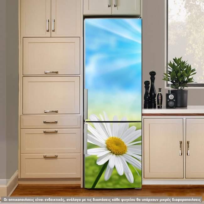 Μαργαρίτα στον ήλιο , αυτοκόλλητο ψυγείου