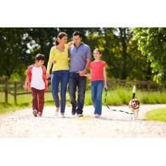 Family walking 430 x 250, φωτογραφική ταπετσαρία