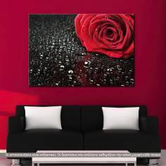Πίνακας σε καμβά, Τριαντάφυλλο, Rose with water drops