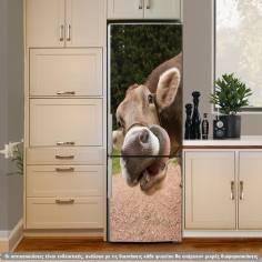 Δίαιτα απο Δευτέρα??? αυτοκόλλητο ψυγείου