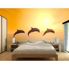 Δελφίνια Στο ηλιοβασίλεμα , φωτογραφική ταπετσαρία