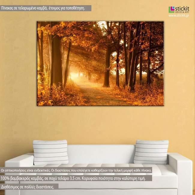 Autumn sunbeams, πίνακας σε καμβά