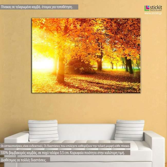 Autumn sunrise, πίνακας σε καμβά
