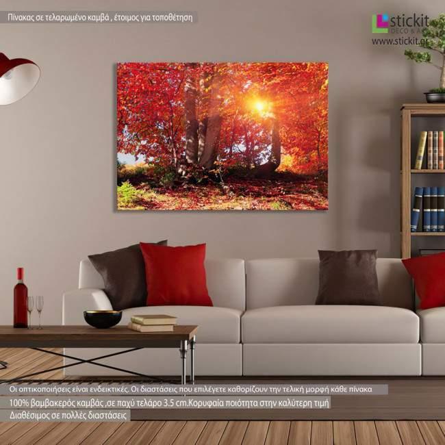 Πίνακας σε καμβά, Φθινοπωρινό δάσος, Autumn fantasy