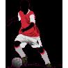 Ποδοσφαιριστής IV, Αυτοκόλλητο τοίχου