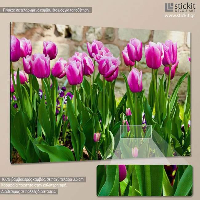 Pink tulips I, πίνακας σε καμβά