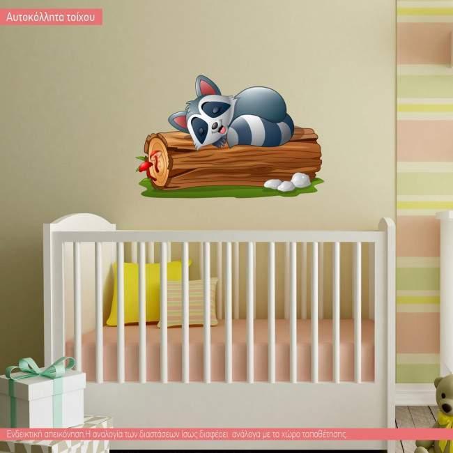 Χουζούρικο ρακούν, αυτοκόλλητο τοίχου παιδικό με ζωάκι