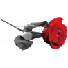 Τριαντάφυλο Φωτορεαλιστικό, αυτοκόλλητο τοίχου , κοντινό