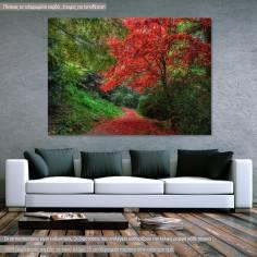 Κόκκινο μονοπάτι, πίνακας σε καμβά