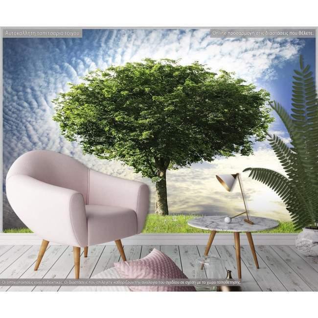 Μοναχικό δέντρο, φωτογραφική ταπετσαρία